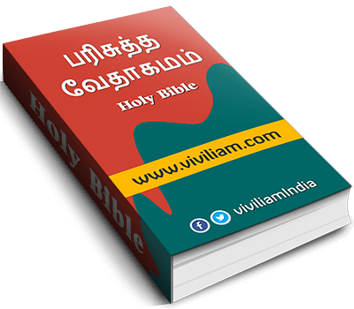 Viviliam New Bible
